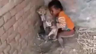 Little Baby Holds Her Female Dog Little Puppies
