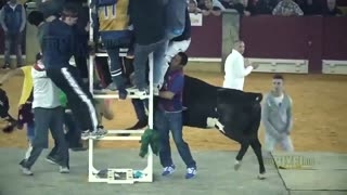Dangerous Bull Fight Accidents Compilation - Funny People Fail Video Clips