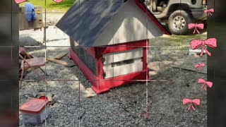 Chicken coup build