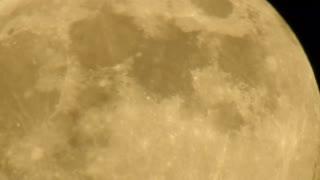 Multiple UFO's Filmed Moving Across the Moonlight