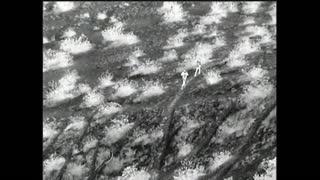 Video capta a hombre dejando caer a niñas desde valla fronteriza