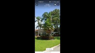 More google maps palms