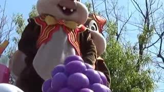 Adorable Chipmunks Hide Food Entertainment show