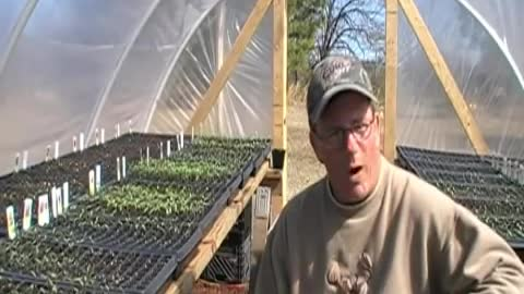 Backyard Greenhouses - Update