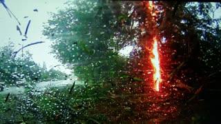 Lightning Strikes Tree, Causing Crash