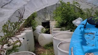 Hoop House Pt. 1 - Before and After Cleanup!