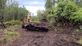 Homestead Land Clearing & Trash Removal