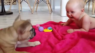 Babies make everyone happy