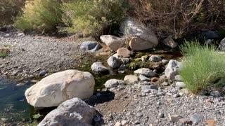 A creek I found in Red Rock Nevada