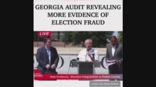 Georgia audit revealing more fraud