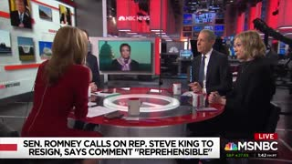 MSNBC host Nicolle Wallace thinks the Democrat Party doesn't contain a strain of racism