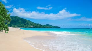Relax Library: Video 29.Paradise Beach . Relaxing videos and sounds