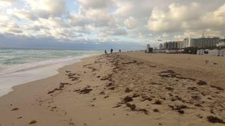 calming waves South Beach florida