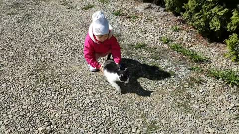 Two-Year-Old Demonstrates How NOT TO Carry a Cat!