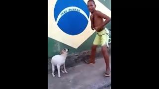Perrito bailando con un niño