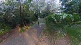 Botanic Gardens Brisbane Queensland Australia