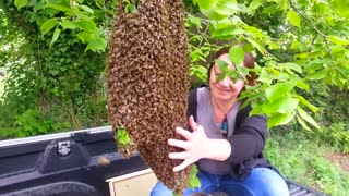 This woman plays with dangerous bees