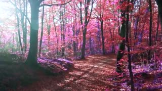 The Elves Beautiful Fantasy Music for Relaxation by Peder B. Helland