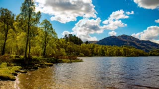Relax Library Video 56. River sounds in the forest