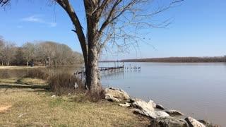 Make Lake Livingston Your Backyard 04
