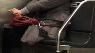 Woman on the subway train looks like she's resuscitating her purse