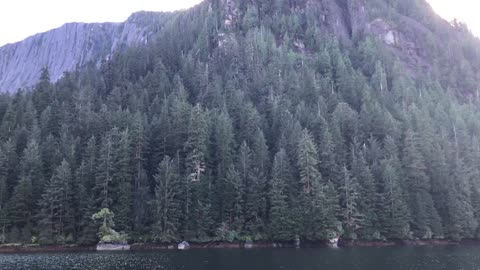 Seaplane lands on a lake
