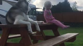 Little Girl And Dog Share Inseparable Bond