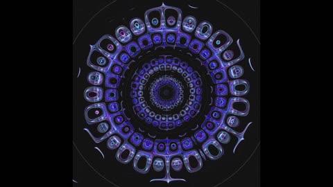 A Mesmerizing Audio Visual Experience