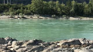 mountain river Katun with beautiful color