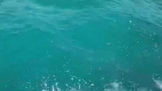 EAGLE BAY DOMINICAN REPUBLIC