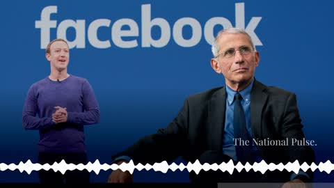 Fauci Reveals What Was Redacted In His Zuckerberg Emails: Money.