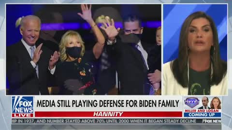 Loesch: It's 'Biden Privilege' To Lie About Drugs in Your Gun Form and Still Come out with a Book