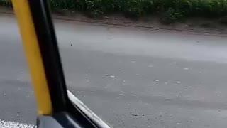 Video: Conductor en aparente estado de alicoramiento causó grave accidente en el Anillo Vial