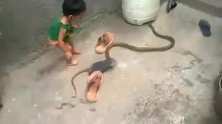 Kid plays with snake in his backyard 😲 😲