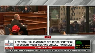 Witness #12 testifies at Michigan House Oversight Committee hearing on 2020 Election. Dec. 2, 2020.
