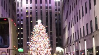 Christmas tree from New York city