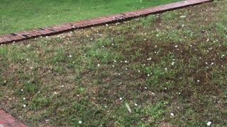 Hail and Tornado in Texas