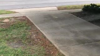Man jumps out of ambulance