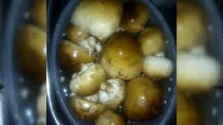 Cooking common mushrooms