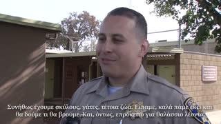 Θαλάσσιος λέων «συνελήφθη» για το καλό του