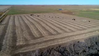 South Dakota Governor Kristi Noem Interview About Protect The Harvest