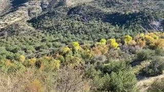 Beautiful Arizona Mountains