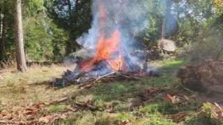 Harstine Fire