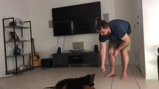 Ten-Weeks-Old Puppy Already Knows How To Perform Variety Of Tricks