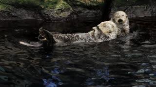 Banho relaxante em família