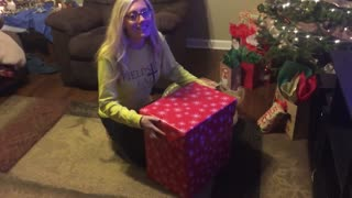 Wife reacts to dream puppy Christmas surprise!