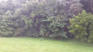 Heavy rain 9/13/20