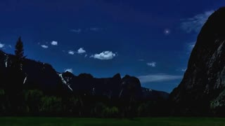 Sleep Sounds: Relaxing Forest Night, 8 Hours