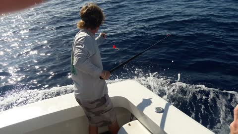 Tagging & Releasing a Sailfish