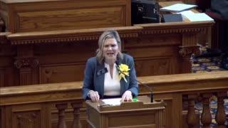 Elena Parent SLAMS Georgia Senate Over Voting Machines!!!